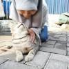 Fanda Puss Photo