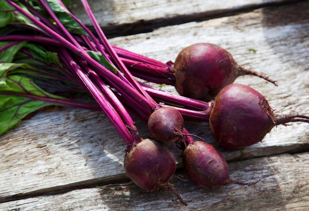 10 Makanan Enak yang Dipercaya Bisa Bikin Cepet Dapat Momongan