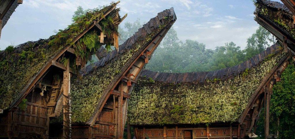 9 Tempat Wisata di Toraja yang Dirindukan selama Pandemik
