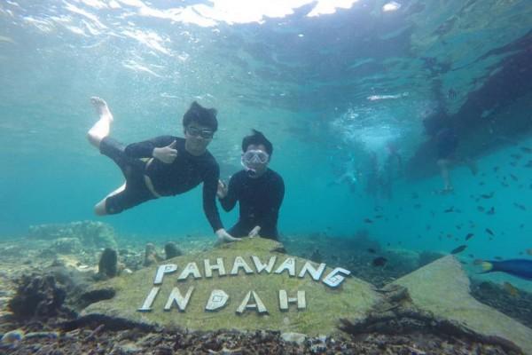 10 Potret Pulau Pahawang, Surganya Snorkeling di Lampung Selatan