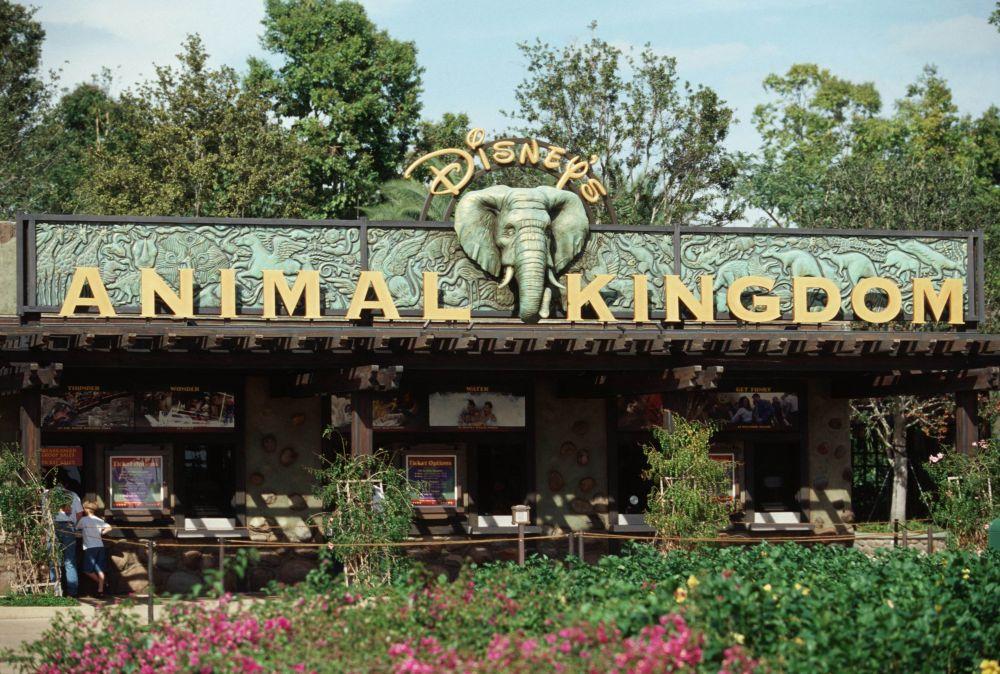 10 Kebun Binatang Terbesar di Amerika Berdasarkan Jumlah Hewan