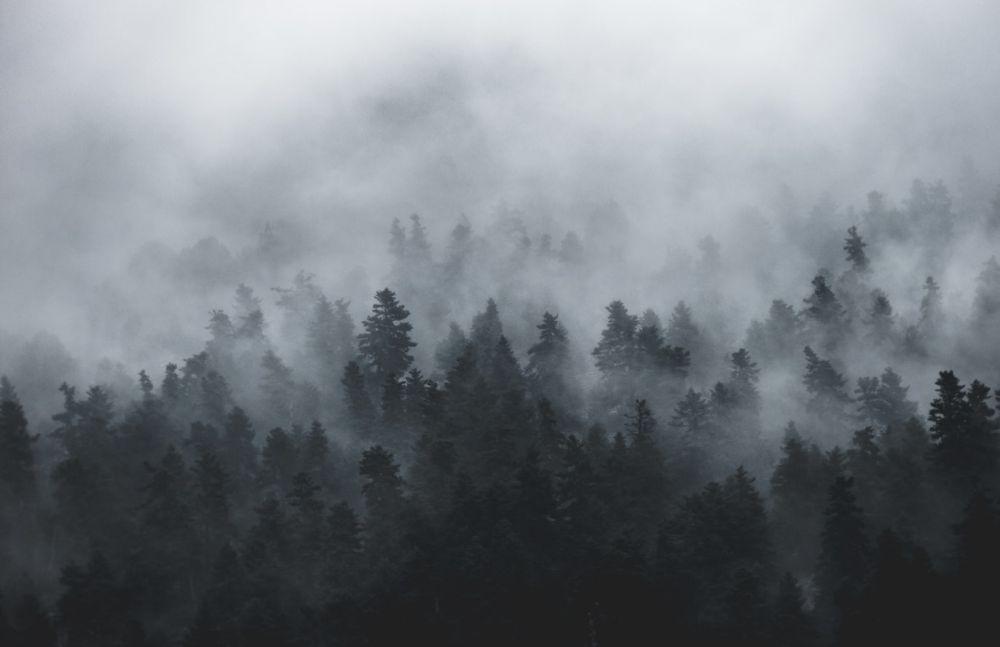5 Fakta Tentang PM 2.5, Partikel Udara yang Mematikan Bagi Manusia!