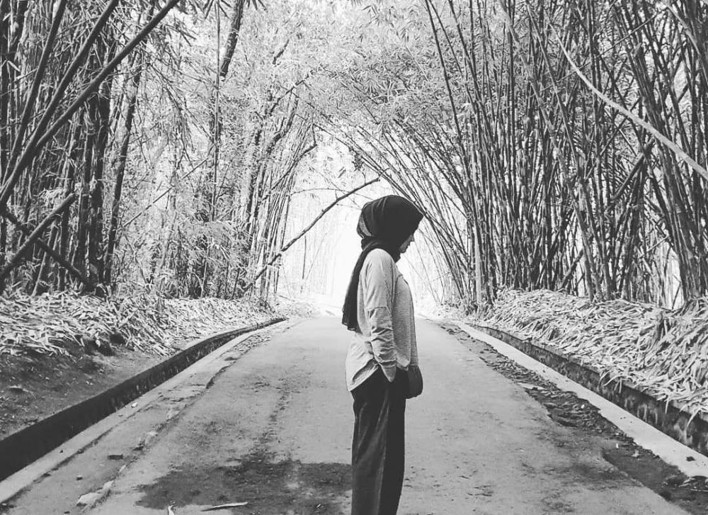 Instagenic, 7 Spot Wisata Hutan Bambu yang Bisa Kamu Datangi