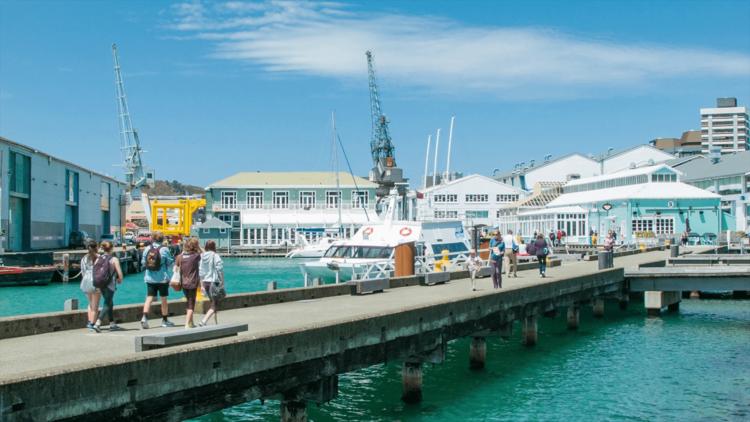Liburan Murah Selandia Baru, 7 Tempat Wisata Gratis di Wellington
