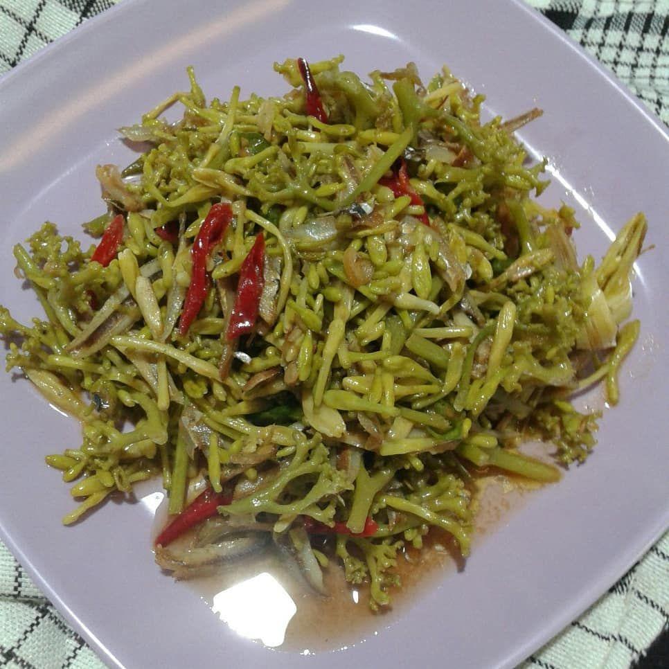 5 Resep Bunga Pepaya Nikmat, Masakan Rumah yang Bikin Ketagihan