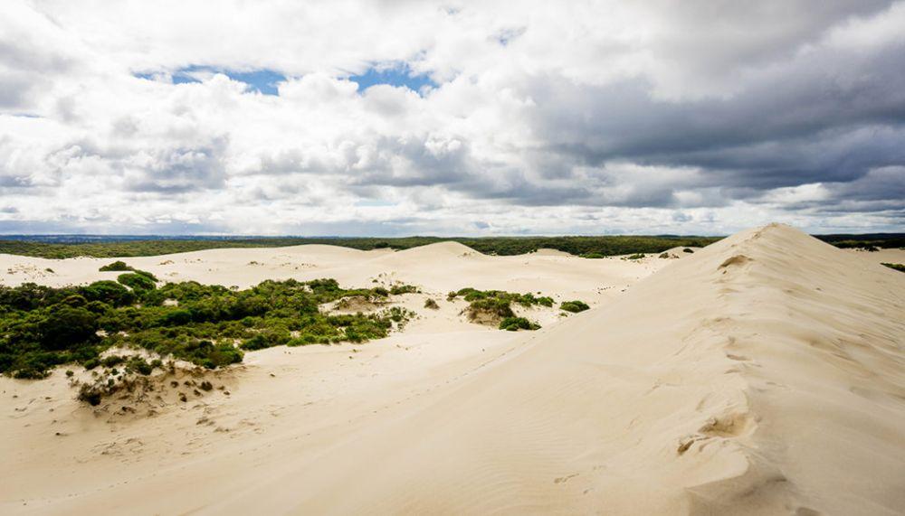 5 Fakta Pulau Kanguru, Pulau Kecil dengan Beragam Destinasi Wisata