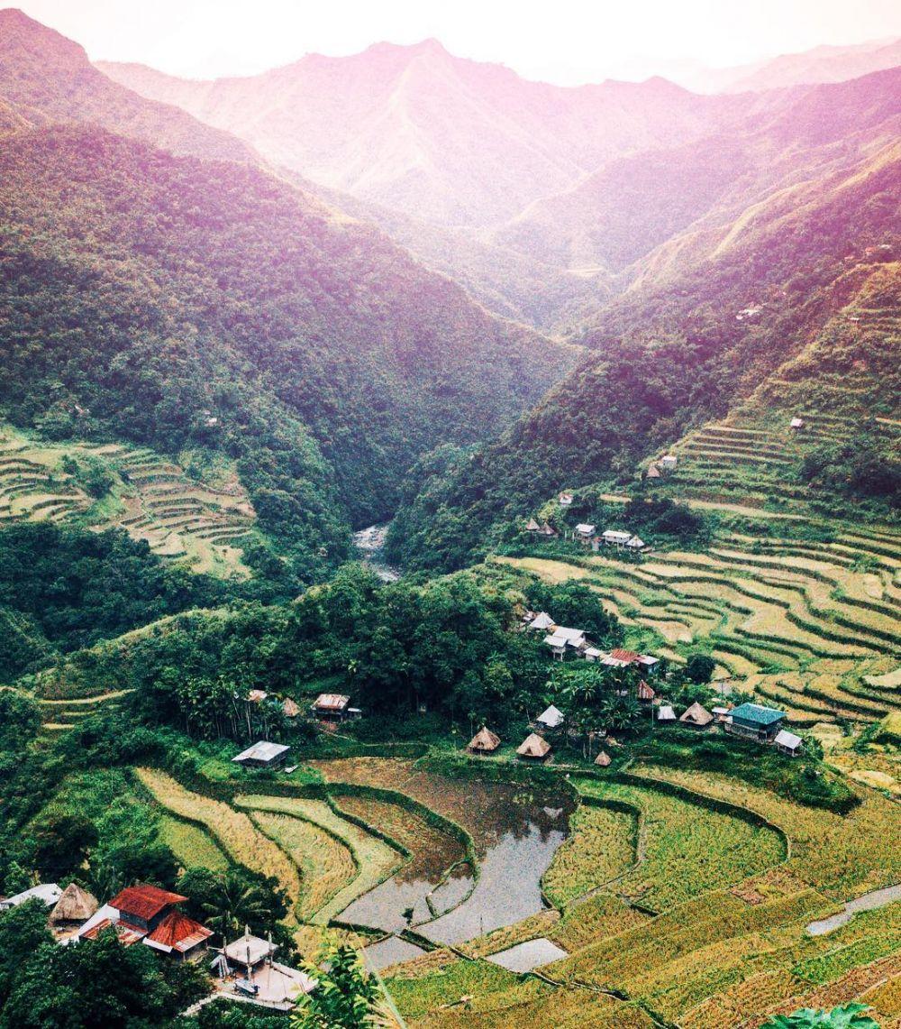 5 Destinasi Asia yang Menyuguhkan Pemandangan Indah Sawah Terasering