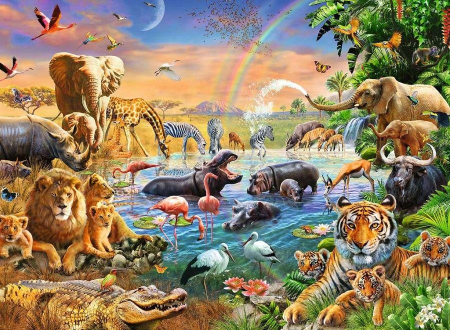 5 Bukti Ilmiah Teori Evolusi, Terjadi Secara Mikro Tanpa Disadari