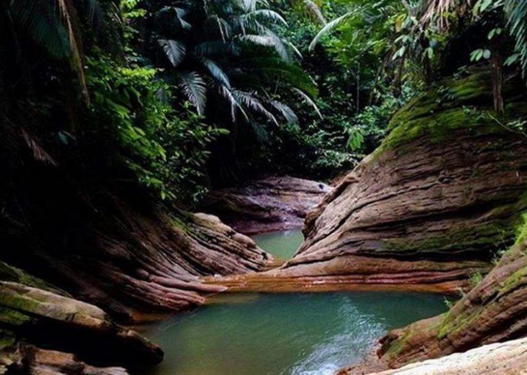 5 Rekomendasi Tempat Wisata di Pulau Borneo yang Patut Dikunjungi