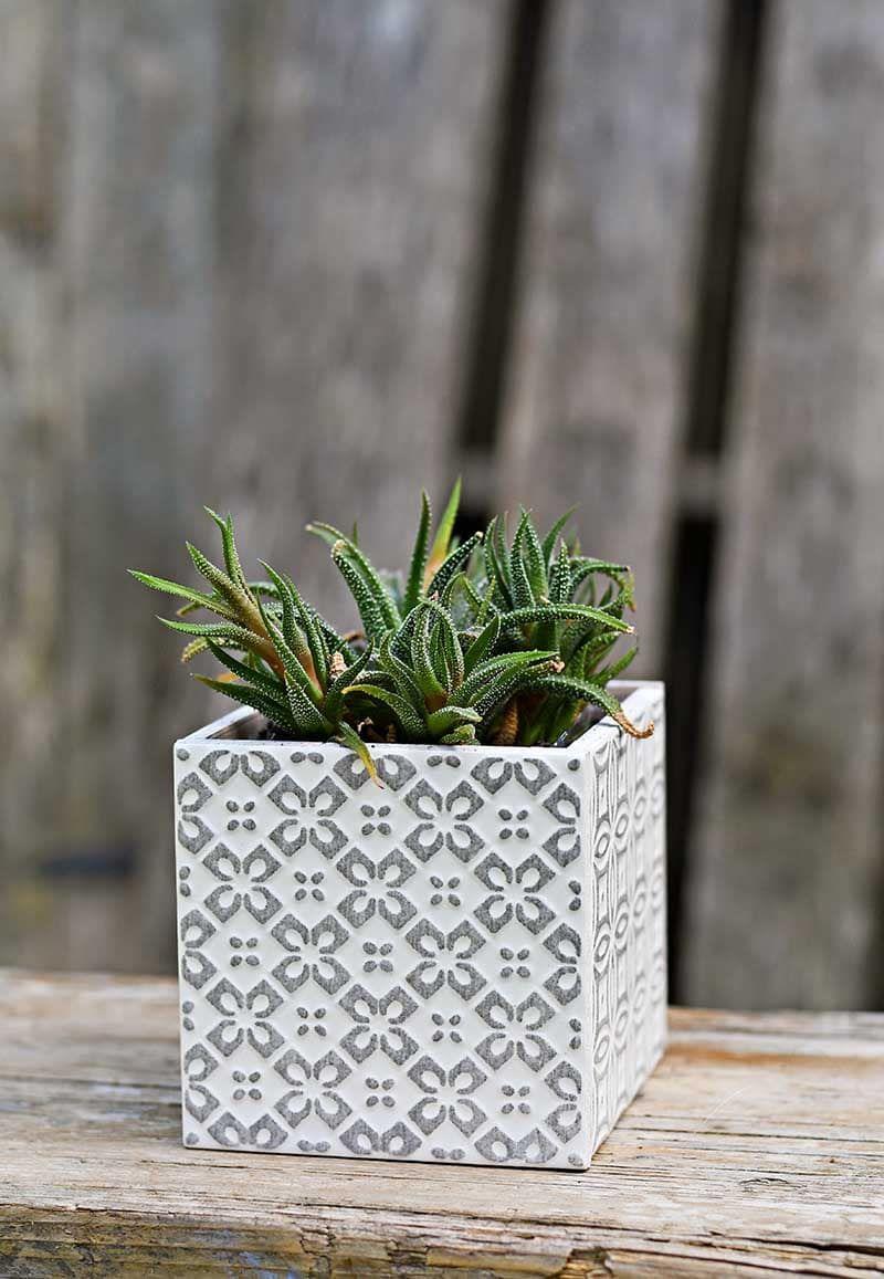 square tile planter grey 3 s 2144a04a00d78a0ddda66c5a3a27ac8f - Hias Kebun dalam Rumah