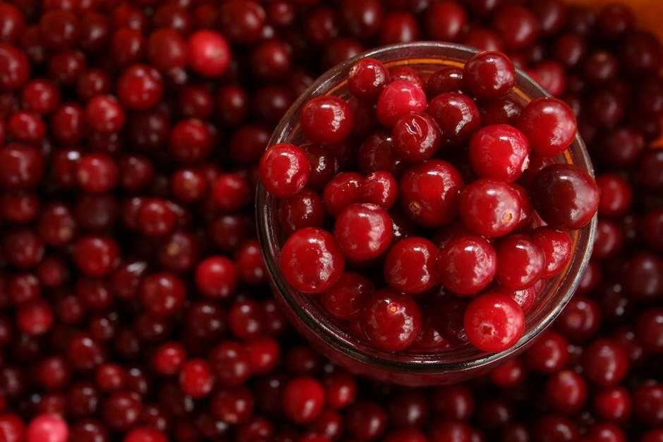 Si Pelindung Jantung! 5 Deretan Manfaat Sehat dari Buah Cranberry