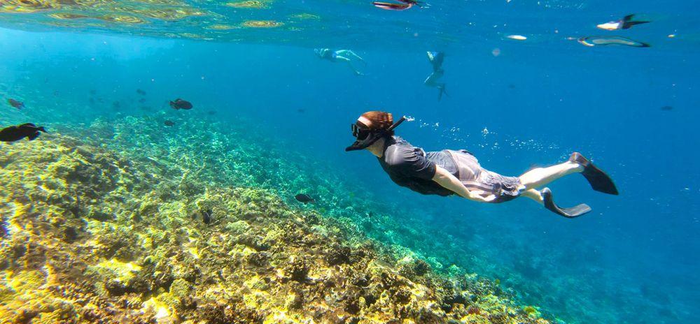 5 Tips Jitu Snorkeling yang Perlu Diterapkan Pemula, Jangan Gegabah!
