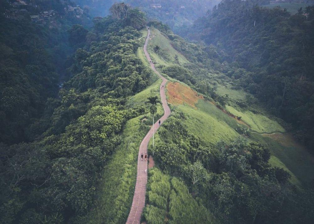 5 Wisata Trekking Terbaik di Ubud Bali, View-nya Bikin Mata Segar