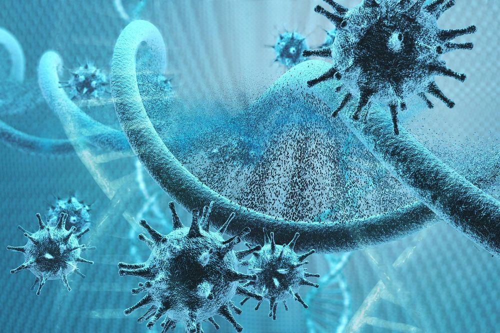 Sama Berbahayanya dengan COVID-19, Ini 5 Fakta Sains Virus Nipah