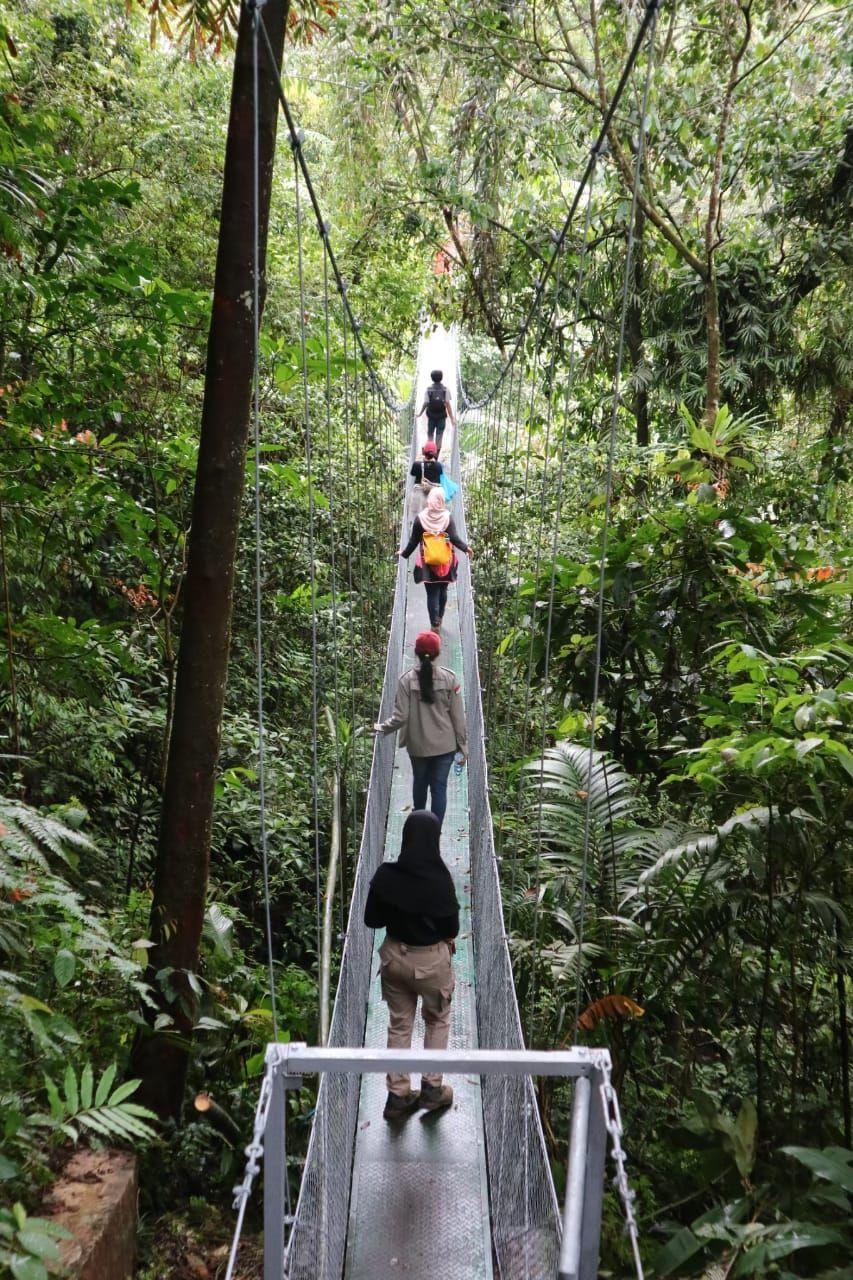 7 Keunggulan Bodogol, Pesona Hutan Edukasi Gunung Gede Pangrango