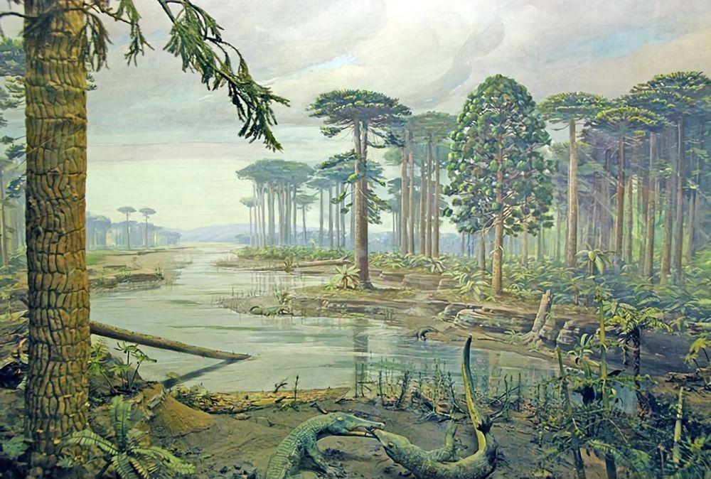 7 Fakta tentang Pangea, Superbenua yang Pernah Eksis di Bumi