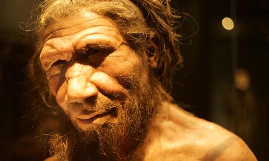 9 Anggota Tubuh Manusia yang 'Hilang' akibat Evolusi, Apa Saja?