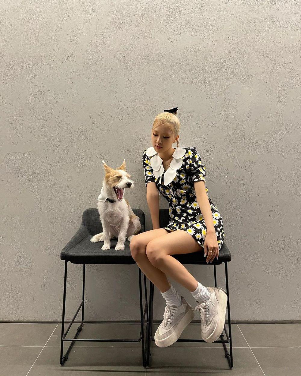 Bikin Gemas, 9 Potret Rosé BLACKPINK dengan Anjing Kesayangan