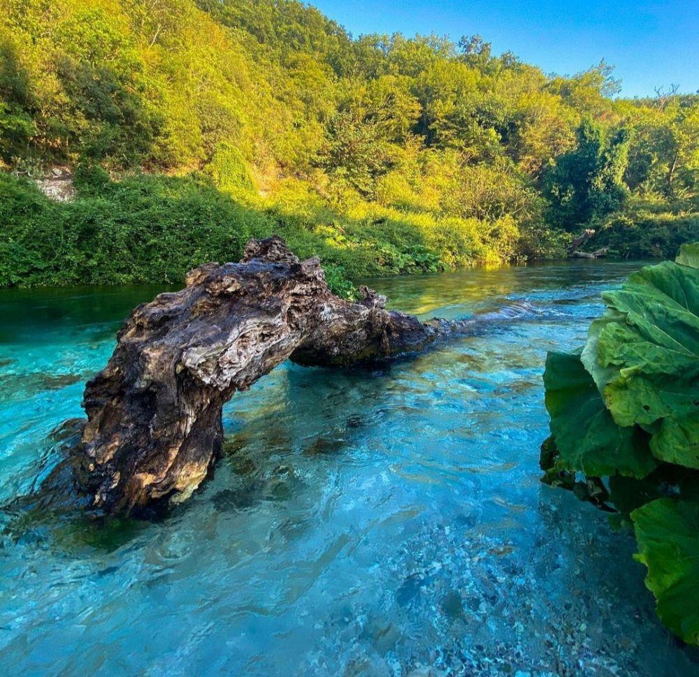 9  Pesona Blue Eye di Albania, Air Sungai Bewarna Biru yang Memukau