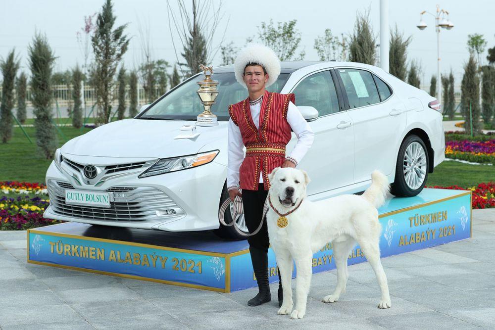 Hormati Ras Anjing Gembala, Turkmenistan Buat Hari Libur Nasional