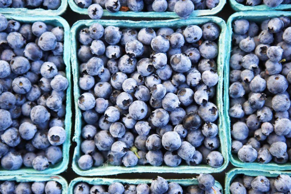Resep Smoothie Blueberry, Minuman Segar yang Mudah Dibuat di Rumah