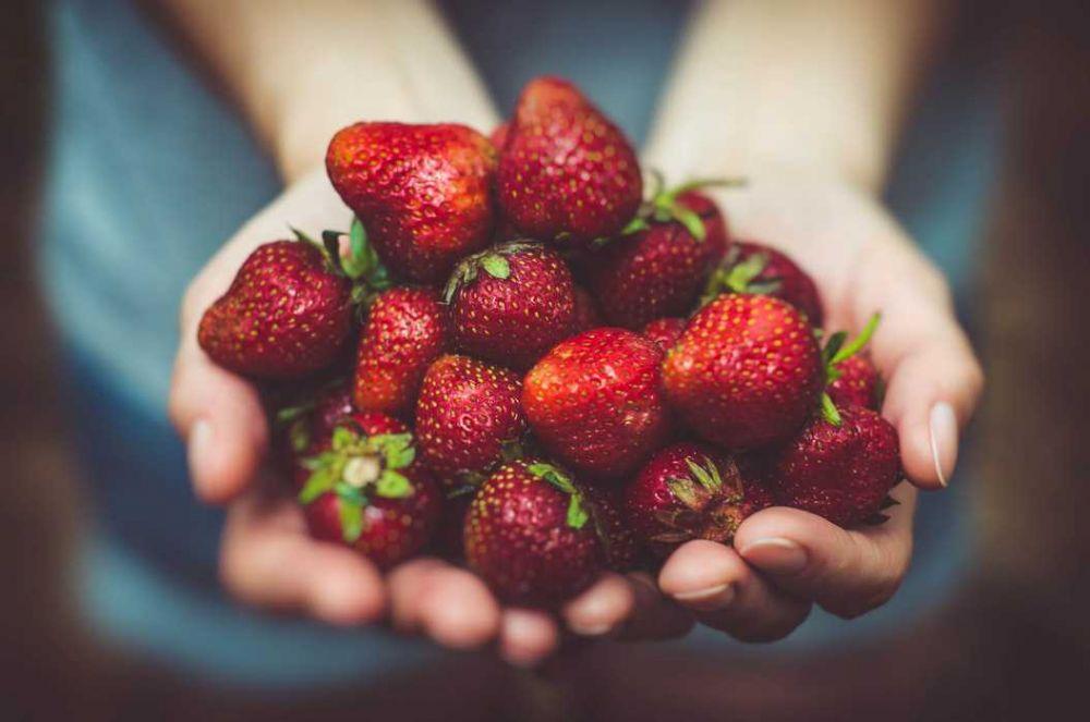 5 Kebiasaan Baik untuk Dilakukan Sebelum Makan, Banyak Manfaat Sehat!