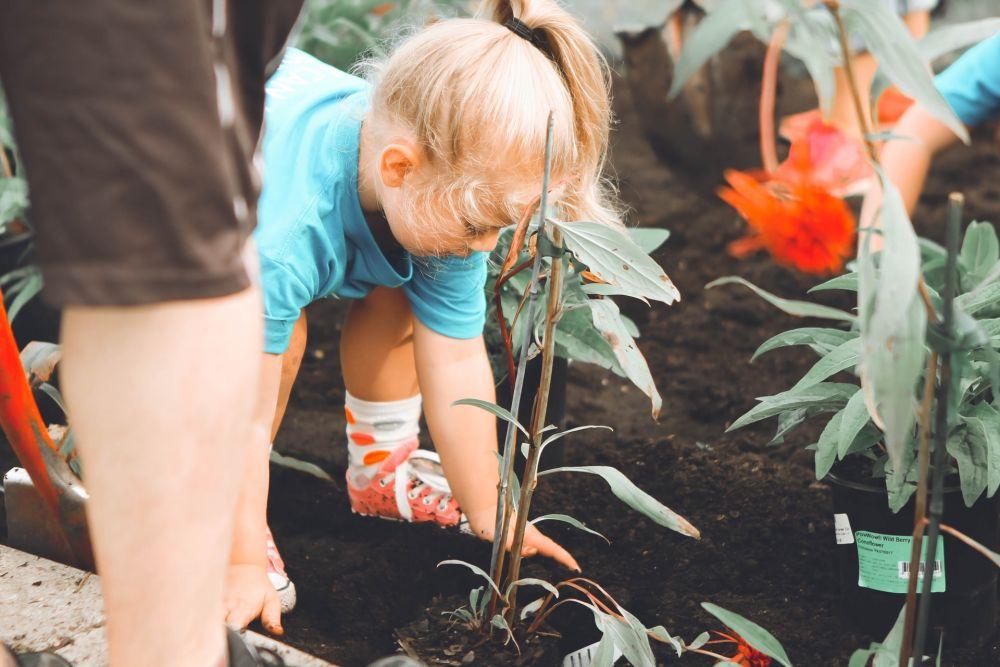#GreenBeauty 5 Langkah Mudah Menjadi Pejuang Lingkungan