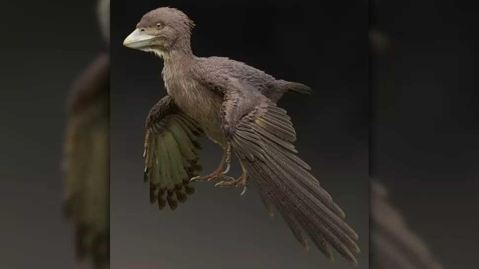 Selain Pterosaurus, Ini 5 Dinosaurus yang Dapat Terbang