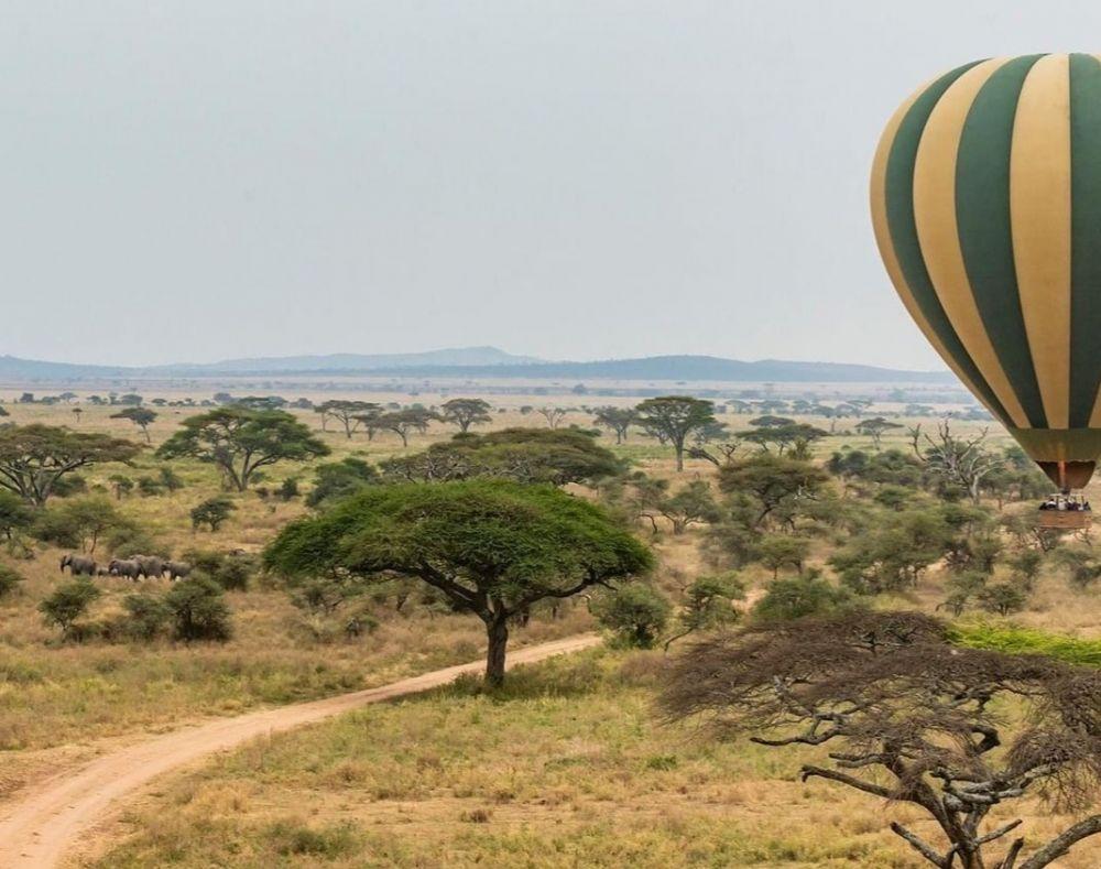 9 Fakta Menarik Taman Nasional Serengeti, Habitat Jutaan Satwa Liar!