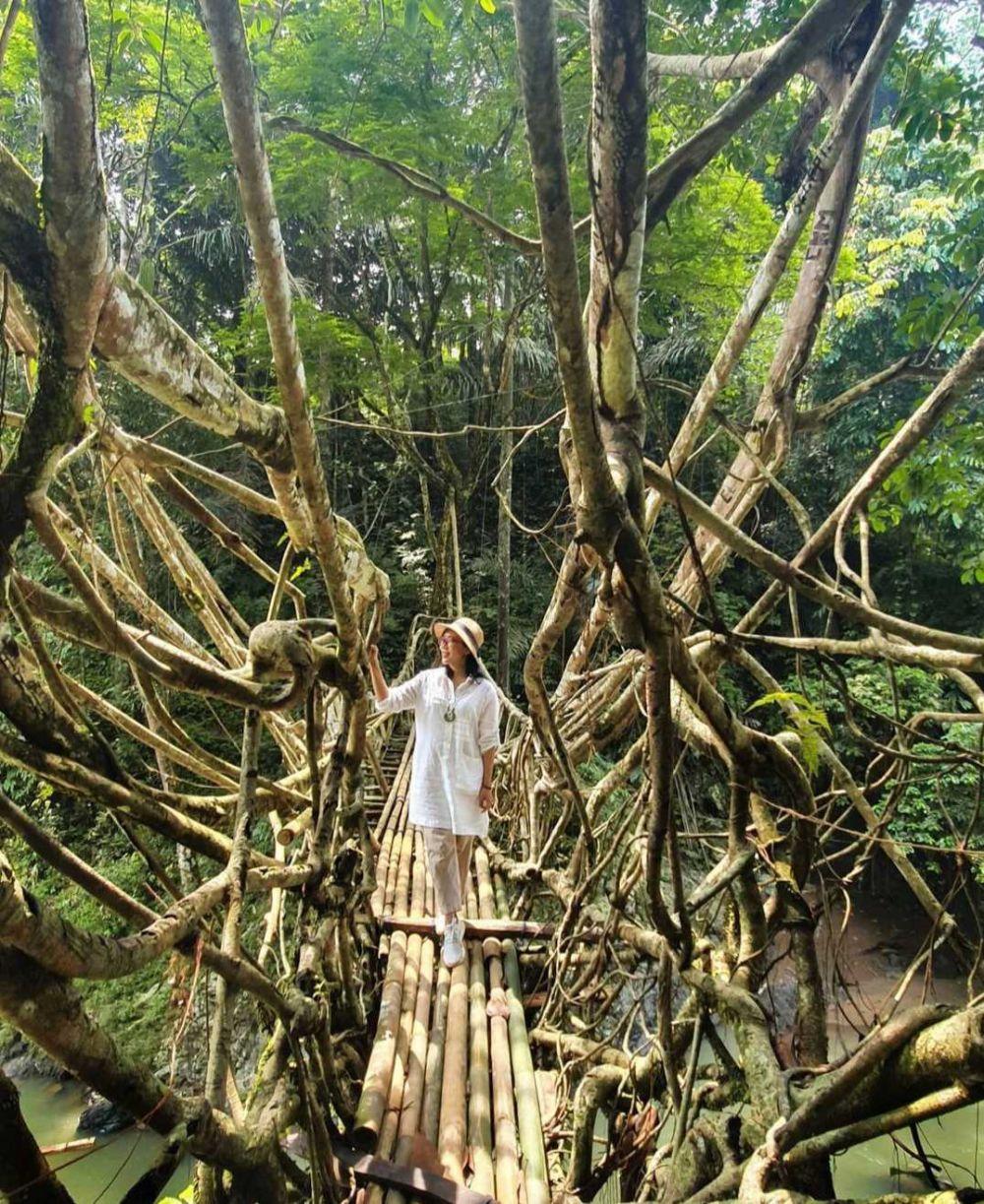 5 Wisata Akar Pohon Unik di Indonesia, Serasa di Negeri Fantasi!