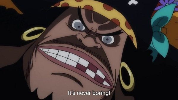 Insomnia Blackbeard Disebut Juga di Profil Hungry Days One Piece!
