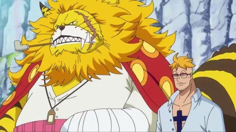 Pesan Marco Pada Luffy Terungkap di One Piece 982!