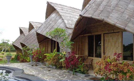 Gila! 11 Hotel Kece di Bali Ini Gak Sampai Rp 500 Ribuan Lho