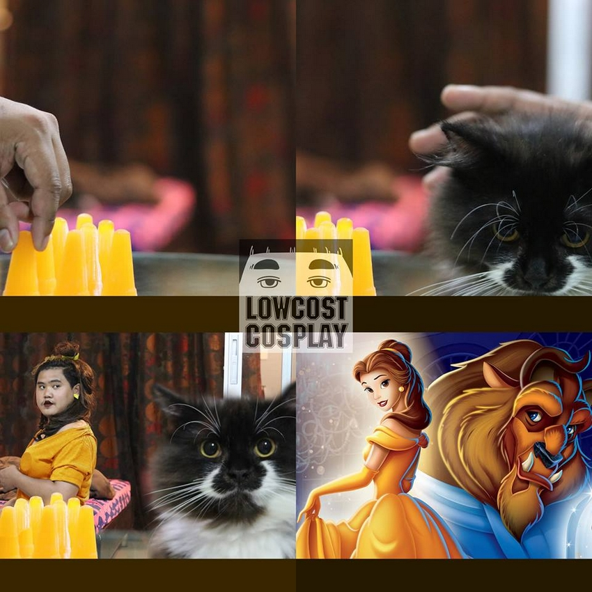meme-beauty-and-the-beast-3-bb2f421adb63e00b734405e37d34d241.jpg