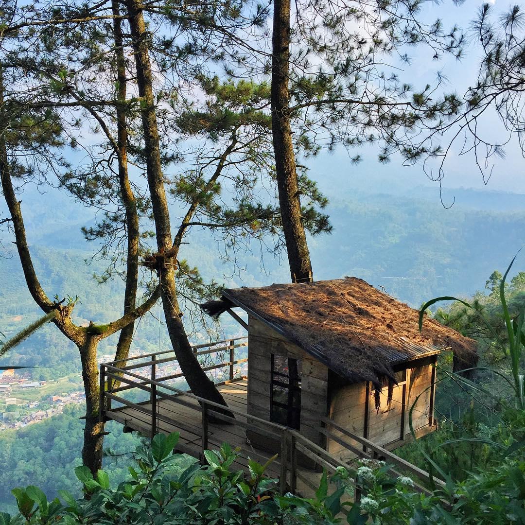 10 Rumah Pohon Paling Unik Di Dunia Punya Indonesia Keren