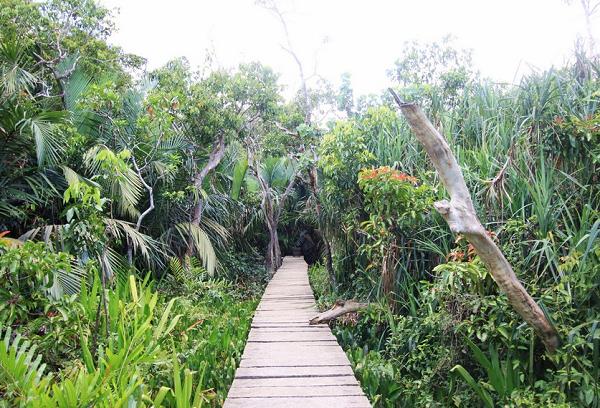 Gak Bakal Rugi, 5 Wisata Terpencil di Kalimantan Ini Wajib Dikunjungi