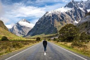 5 Cara Terbaik untuk Berkeliling New Zealand, Dijamin Gak Bakal Nyasar