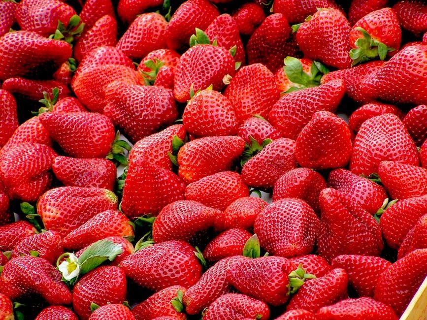 5 Makanan Ini Bisa Mencerahkan Warna Gigimu, Gak Perlu Bleaching Deh!