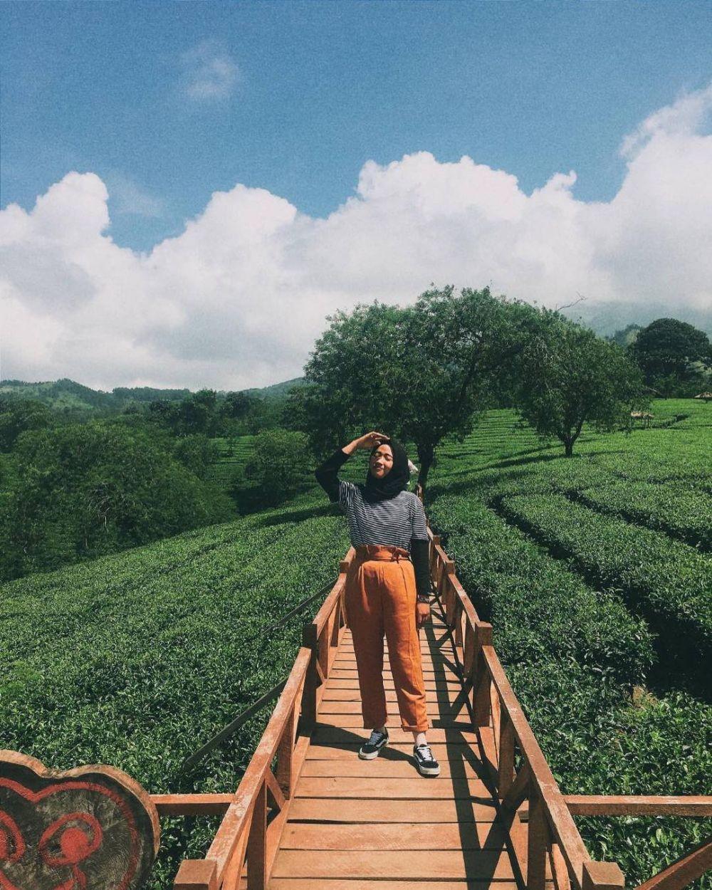 8 Kebun Teh Paling Indah dan Instagramable, Cuma Ada di Indonesia