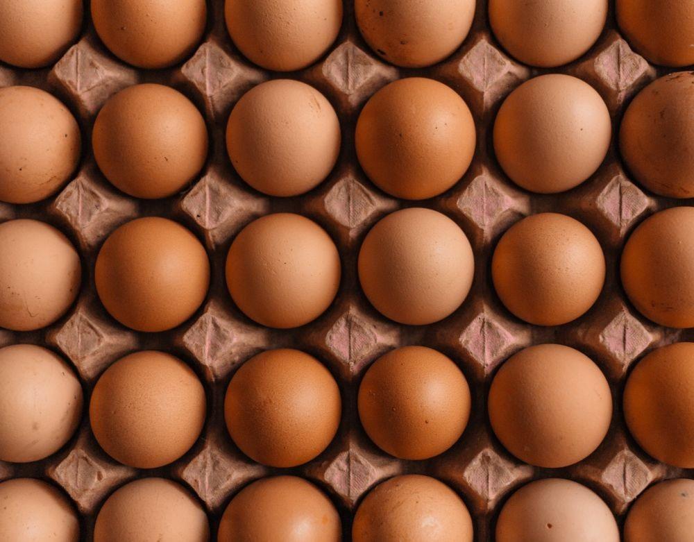 5 Tips Memilih Telur yang Baik Saat Belanja, biar Gak Kena Jackpot!