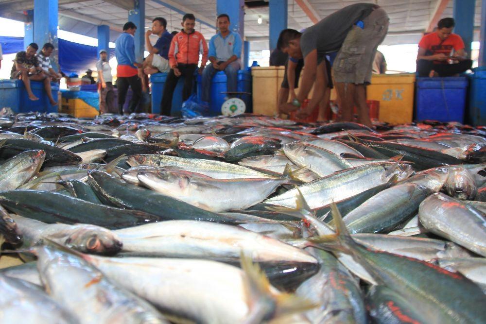 Gelombang Capai 6 Meter, Ribuan Nelayan Cilacap Libur Melaut