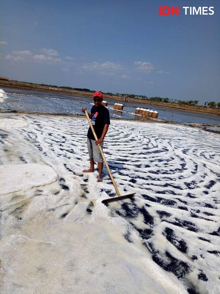 Harga Garam Lokal Terjun Bebas, Ini Dia Pemicunya
