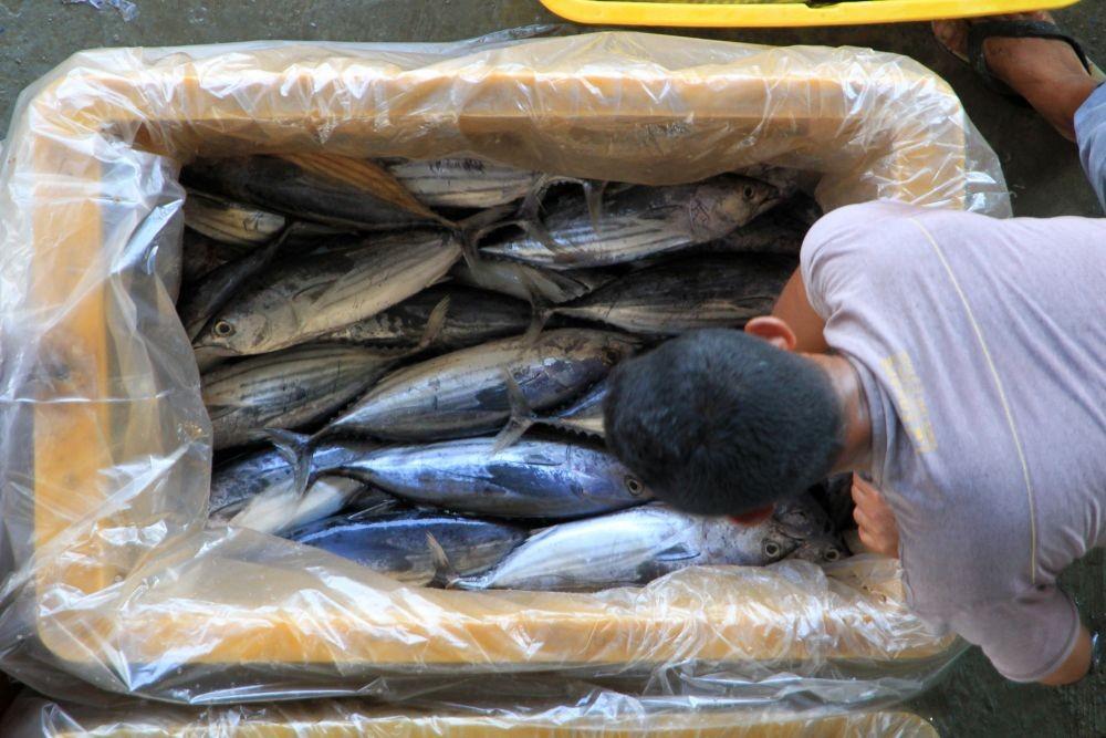 Kartini Pesisir Demak, Masnuah Perjuangkan Identitas Perempuan Nelayan