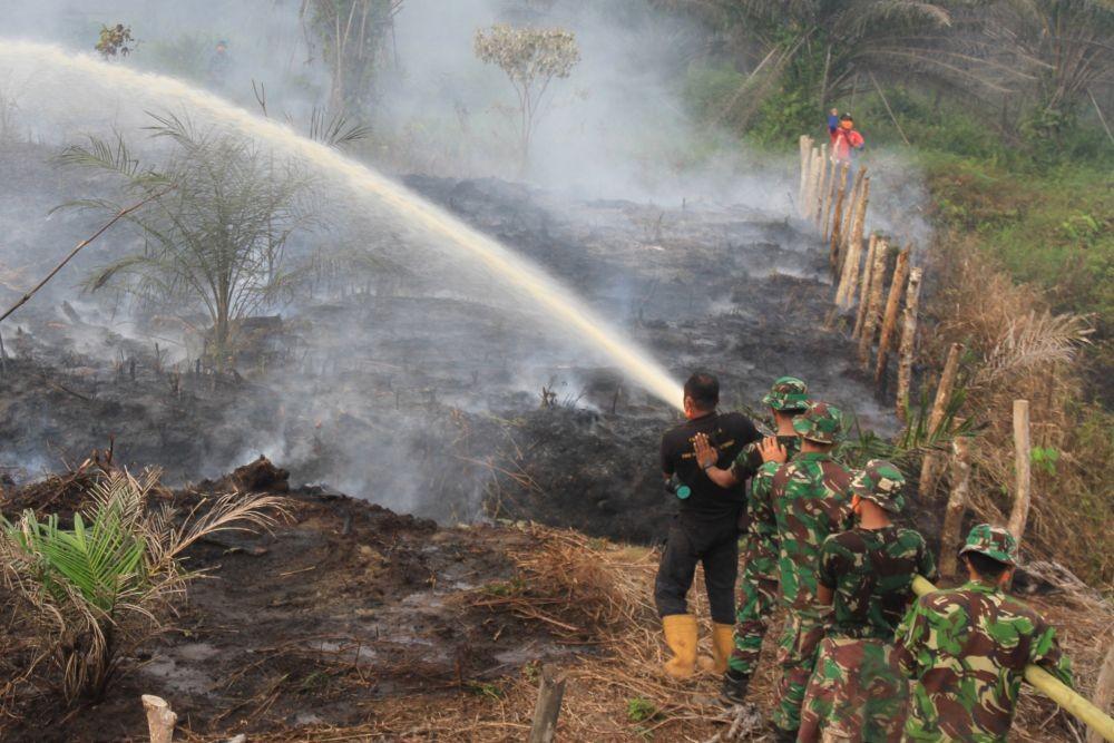 Kaltim Bentuk Masyarakat Peduli Api untuk Antisipasi Kebakaran Hutan