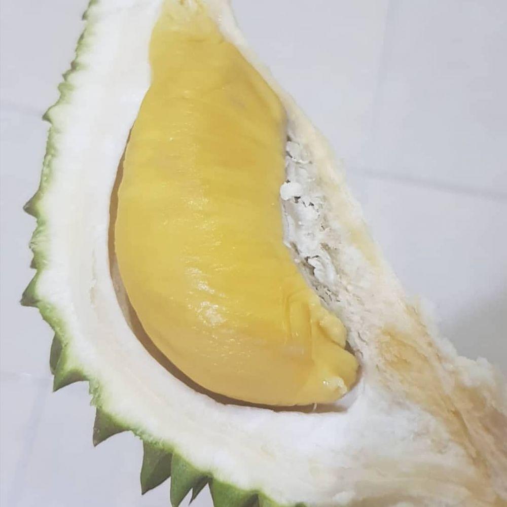 10 Daerah Penghasil Durian Terbaik di Sekitar Medan, Bikin Puas