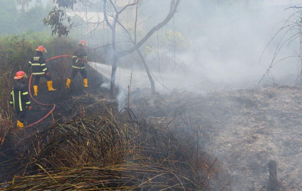 Selain Hutan dan Lahan, Menteri LHK Sebut Ada Kebakaran Sabana di NTT