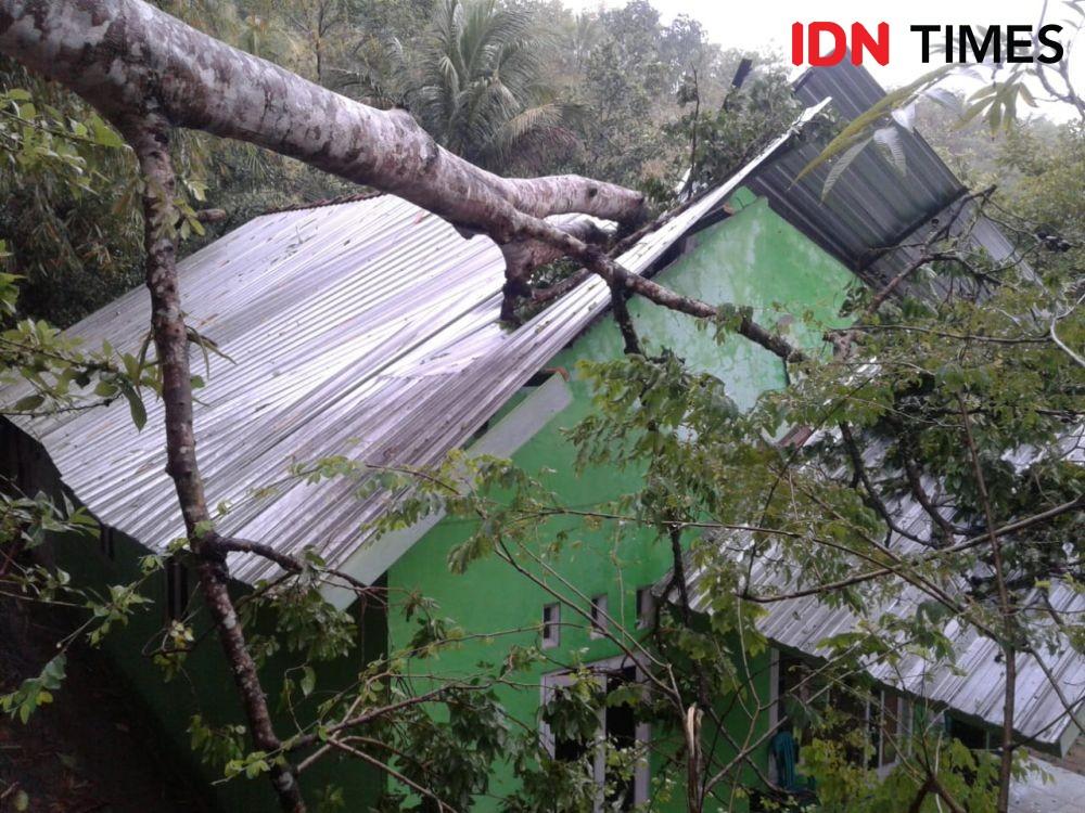 Peringatan BMKG Awas Puting Beliung! Warga Semarang Jauhi Pohon Rimbun