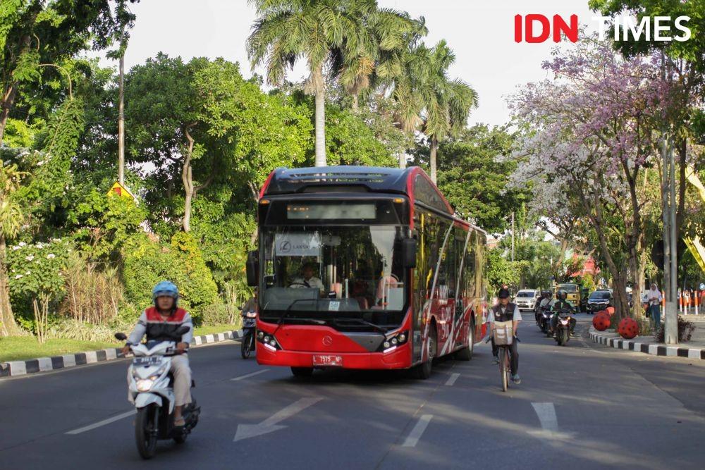 [FOTO] Mirip Sakura, Saat Tabebuya Mulai Bermekaran di Surabaya