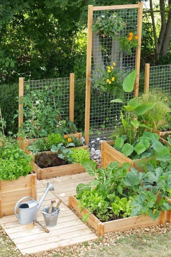 10 Tips Menata Taman Rumah, Bikin Seger Suasana!