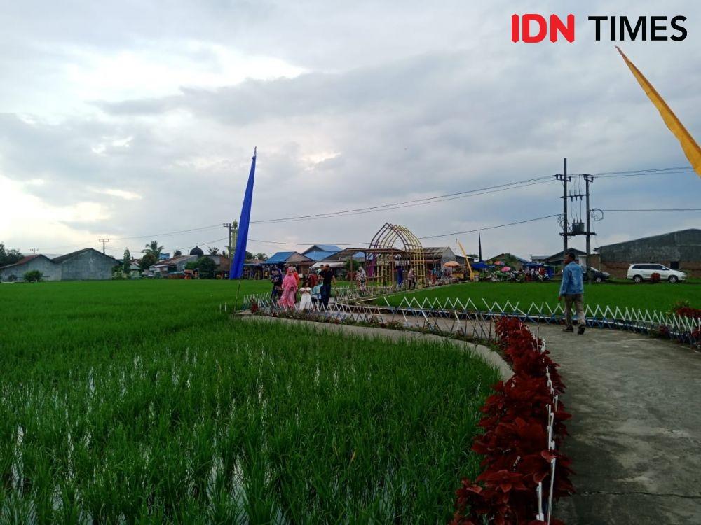 100 Hektare Sawah di Kabupaten Madiun Diserang Hama Tikus